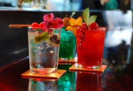 Cours Tiki cocktail - Lloret de mar