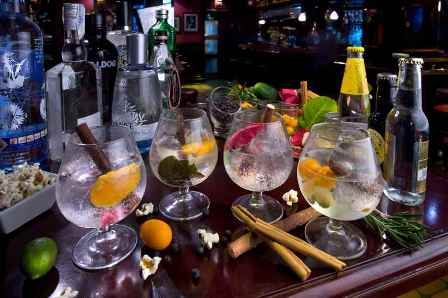 Gin & tonic making and tasting classes - Tossa de mar - gin-tonic-2.jpg