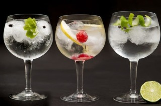Gin & tonic making and tasting classes - Tossa de mar