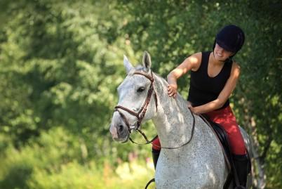 Rutas a caballo Llavorsí - Lleida